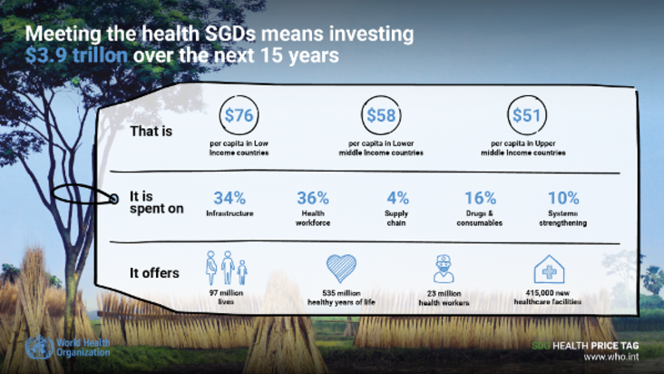The cost of the health SGDs
