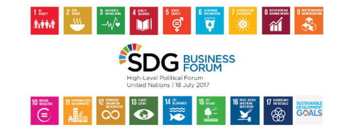 SDG Business Forum