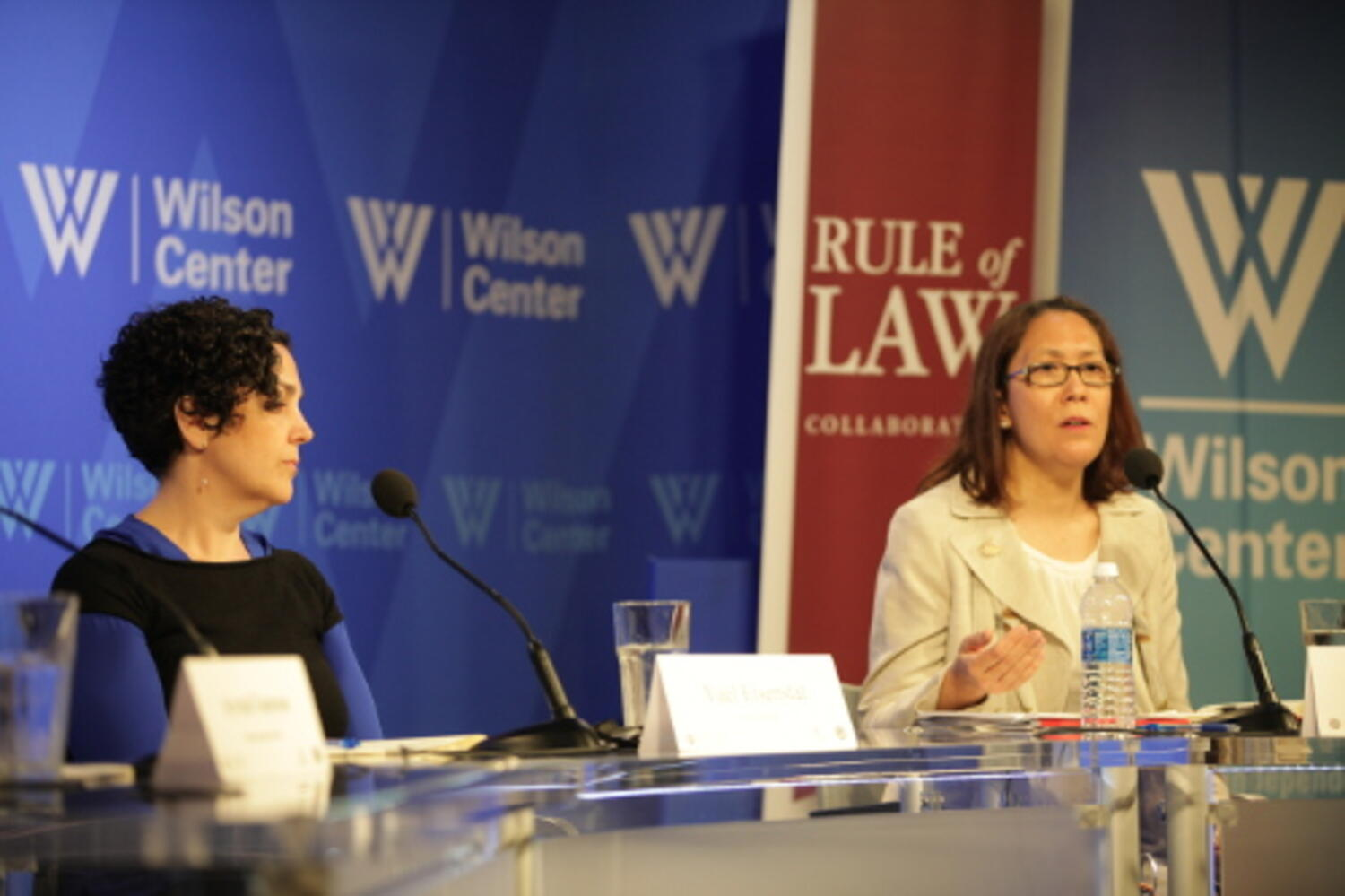 Terry Jennings speaking at the Wilson Center about the Rule of Law