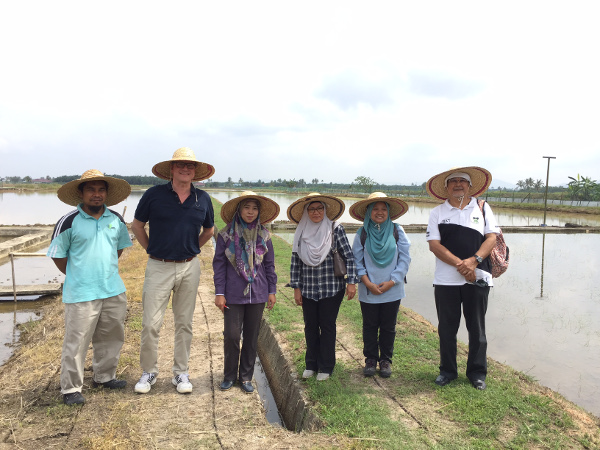 Field trial visit to the Center of Excellence for Rice in Malaysia, left to right: Shahrizal Abdul, Rob van Daalen, Raudhah Talib, Dr. Suzana Yusup, Noor Hafizah Ramli and Abu Bakar Ahmad.
