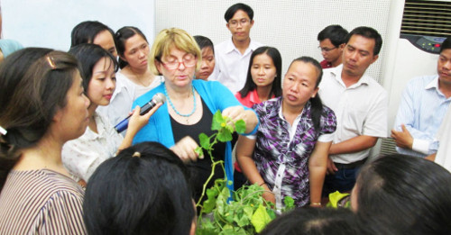 Prof. Jane Polston of the Department of Plant Pathology at the University of Florida is hosted as a visiting expert by the College of Agricultural and Applied Biology at Can Tho University in Vietnam, August 2015. (Photo by Nguyen Quoc Tuan)